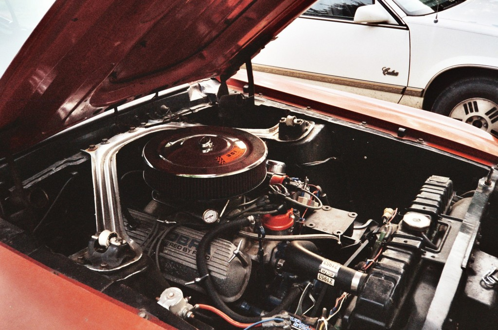 Another MrGreze 1969 Ford Mustang post... - 11946945