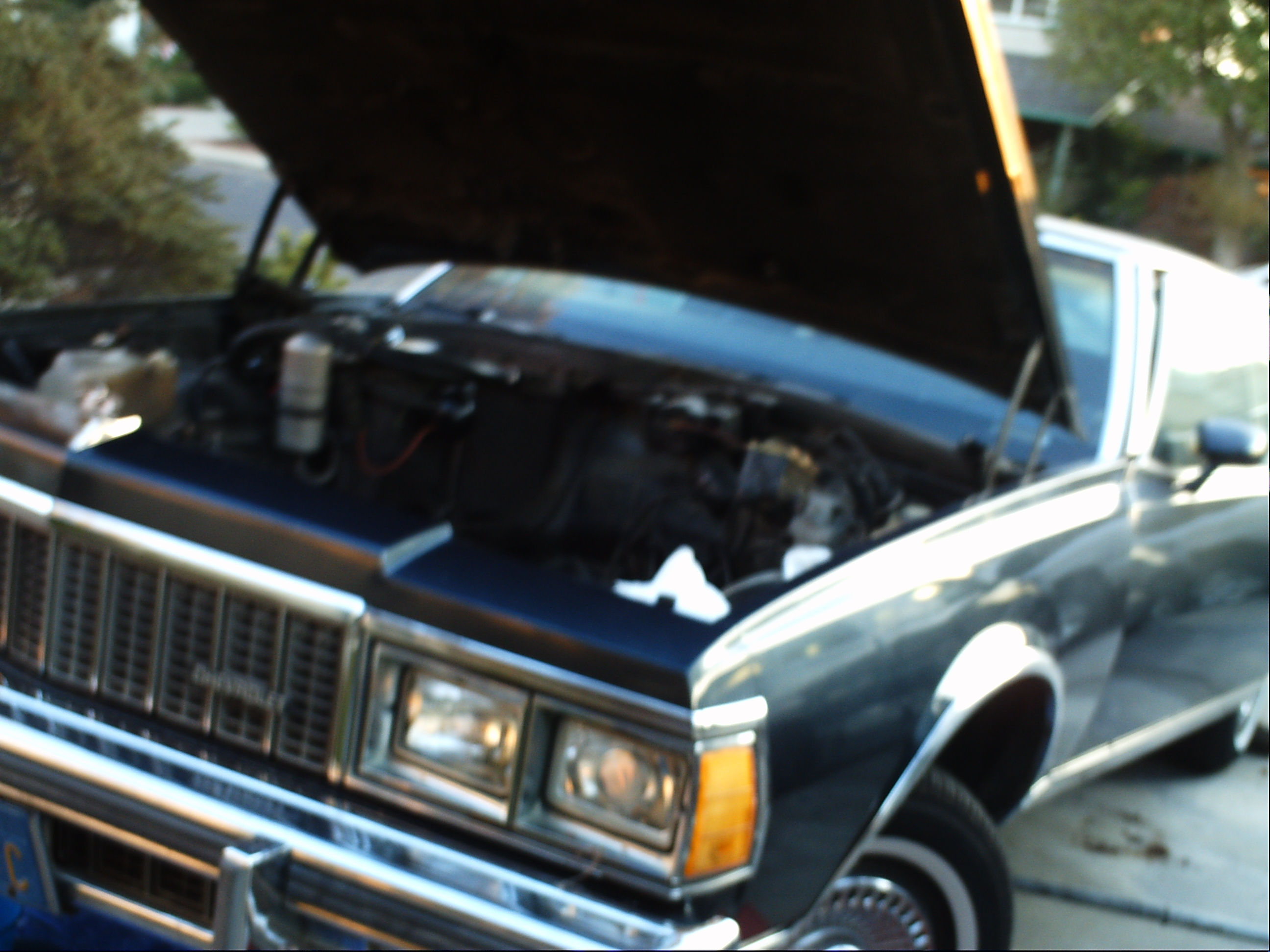 Another 90HeavyChevy 1977 Chevrolet Caprice post... - 11945782