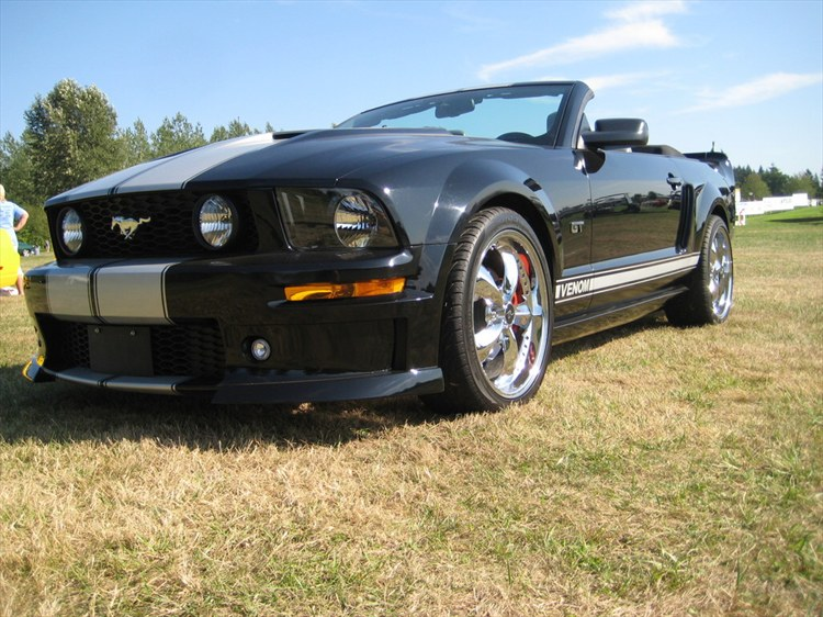 Another TroyL 2007 Ford Mustang post... - 11952198