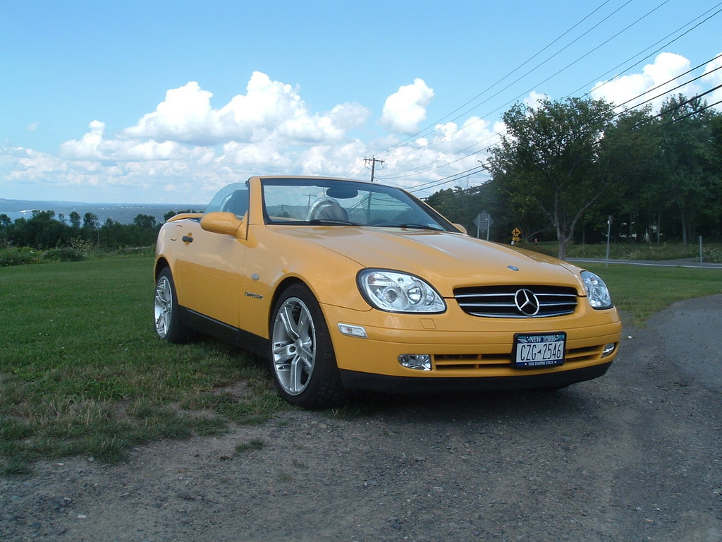 Thordog 39 s 1999 mercedes benz slk class in freeville ny for 1999 mercedes benz slk class