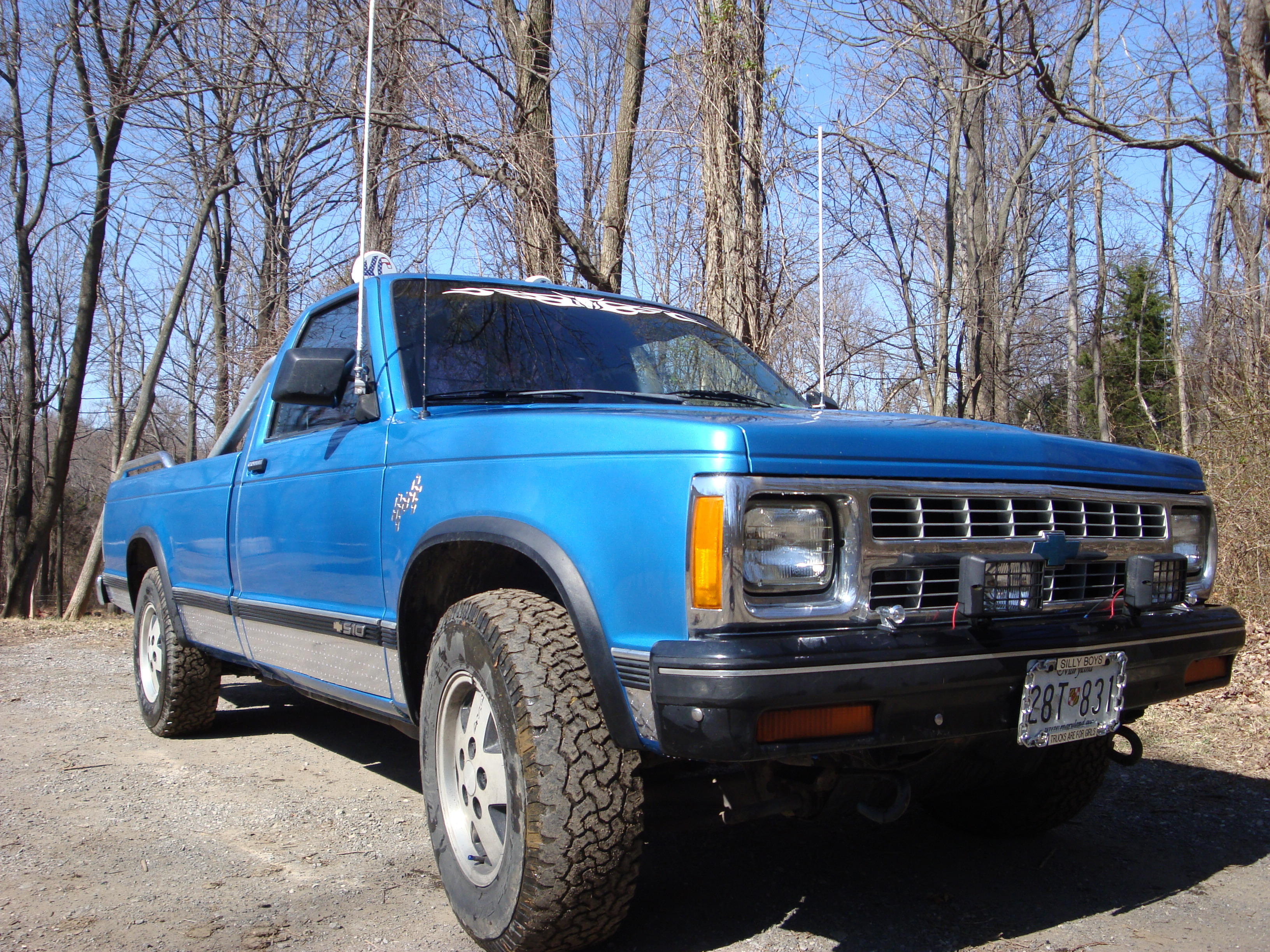 dixie_4x4 1991 Chevrolet S10 Regular Cab