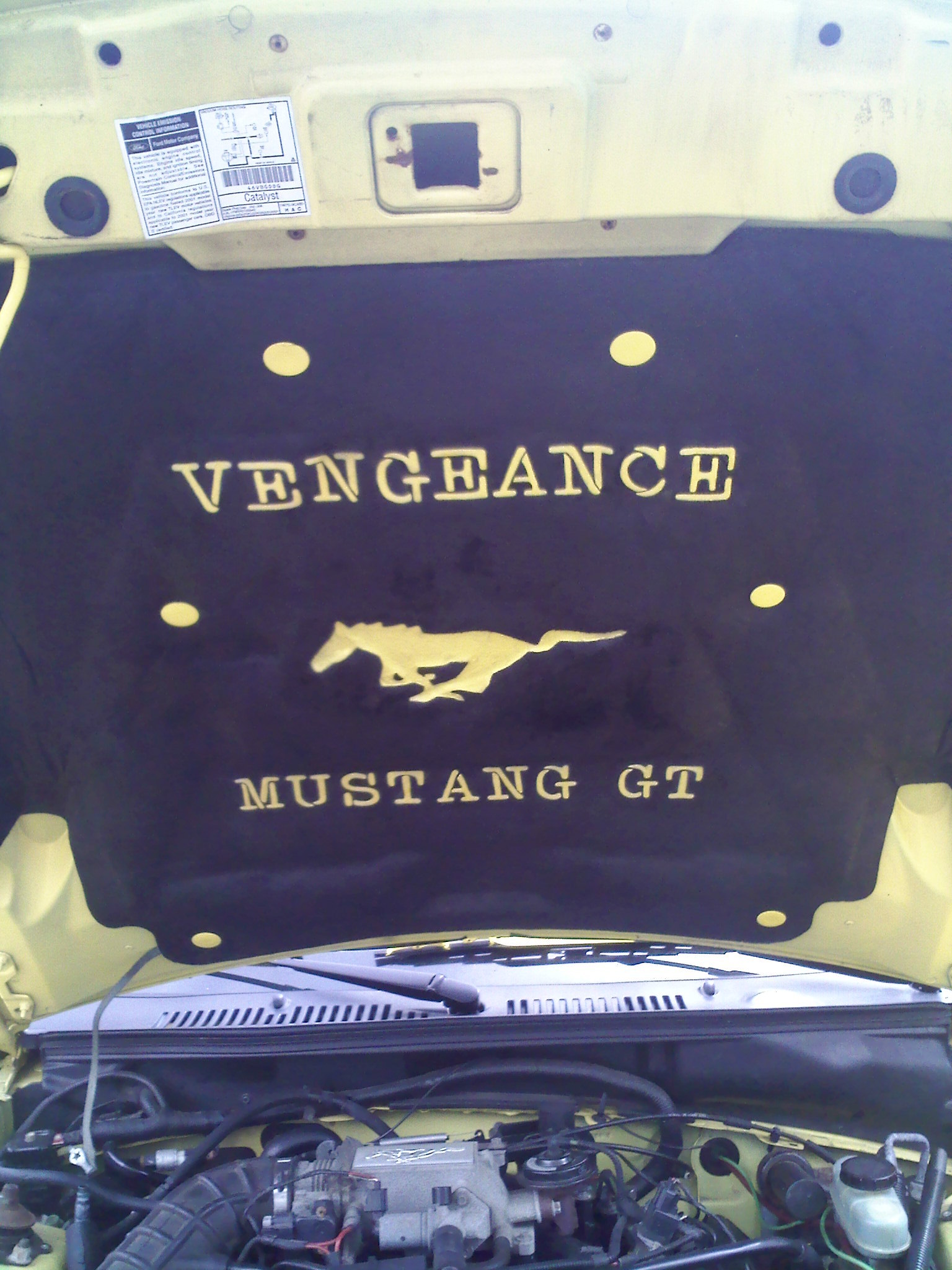 Another Mustanggirl666 2001 Ford Mustang Post 1068281 By
