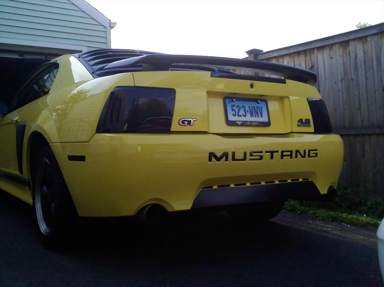 Another MustangGirl666 2001 Ford Mustang post... - 12670163
