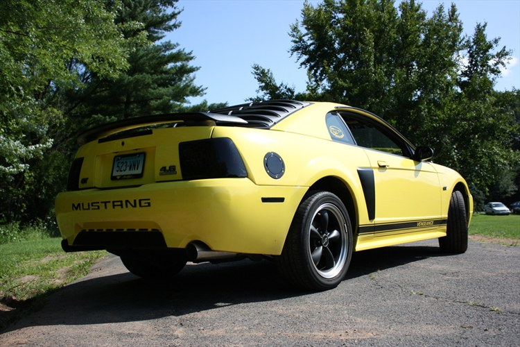 Another MustangGirl666 2001 Ford Mustang post... - 12670183