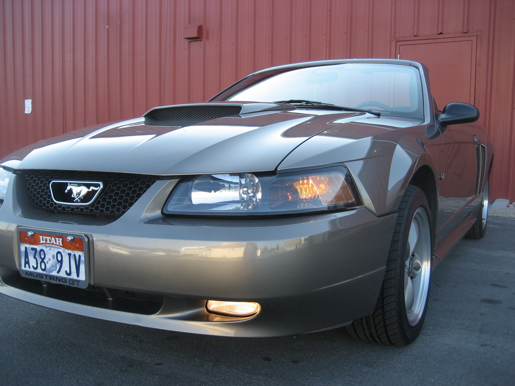 Another TBirdNutt 2001 Ford Mustang post... - 11977617