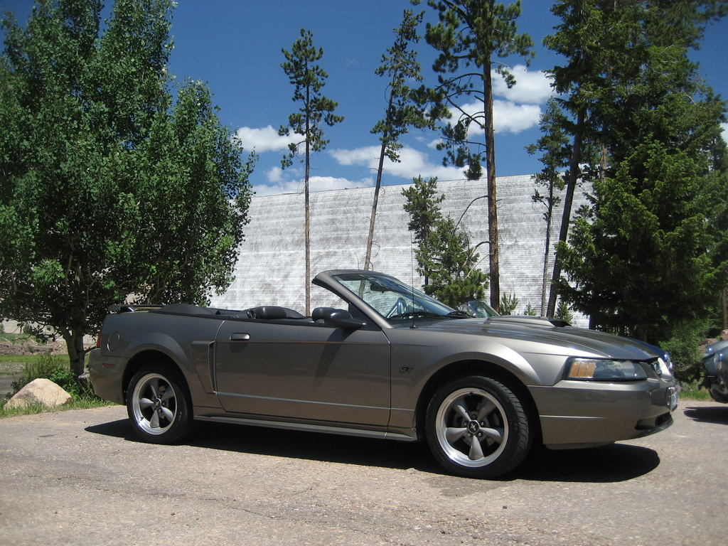 Another TBirdNutt 2001 Ford Mustang post... - 11977621