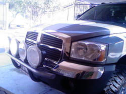 debol 2005 Dodge Dakota Regular Cab & Chassis