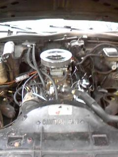 Another LBC_Chevys 1981 Chevrolet Caprice post... - 11981169