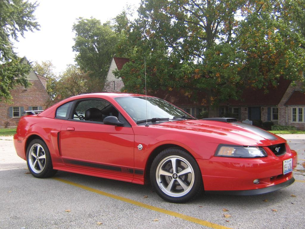 strangedemon 2004 ford mustang specs photos modification info at cardomain. Black Bedroom Furniture Sets. Home Design Ideas