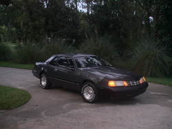 Flavortuss 1988 Ford Thunderbird