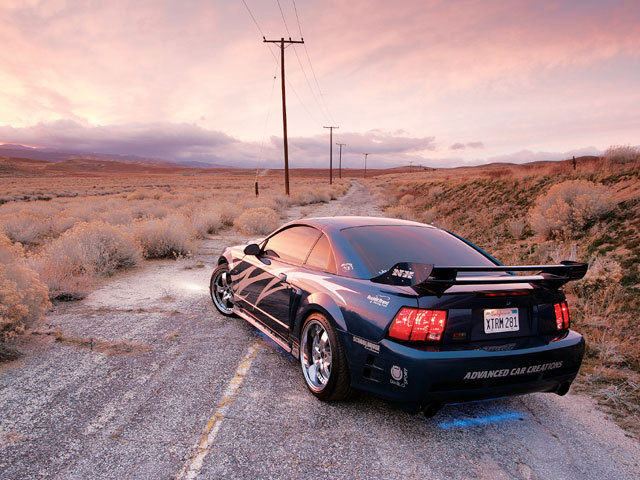 Another xtrmS281 2000 Saleen Mustang post... - 12004216