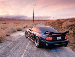 xtrmS281s 2000 Saleen Mustang