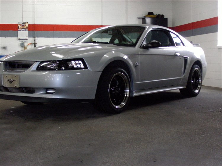 Another SilverStang15 2004 Ford Mustang post... - 12018833