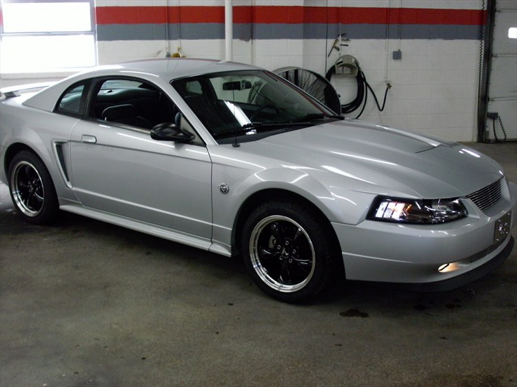 Another SilverStang15 2004 Ford Mustang post... - 12018836