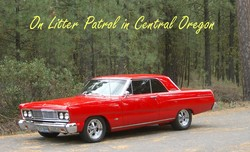 philhale 1965 Ford Fairlane