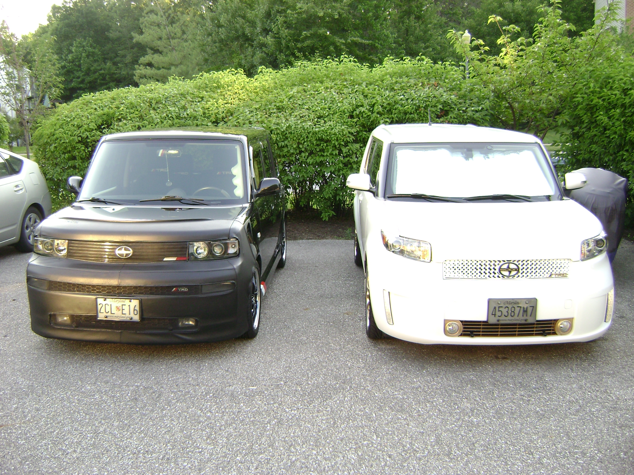 DarkTari 2006 Scion xB 12060855