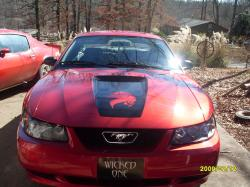mustangfever61s 2002 Ford Mustang