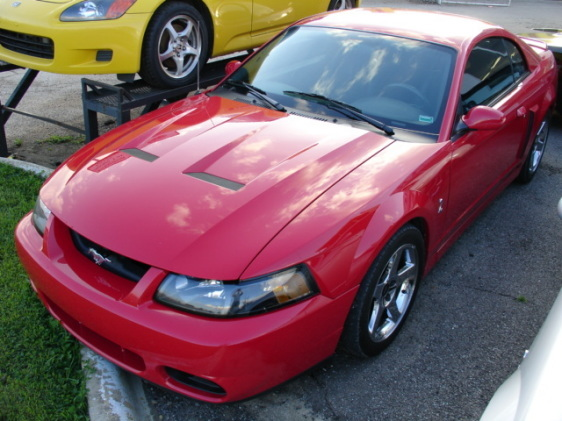 Another blinkimgone24 2004 Ford Mustang post... - 12016496
