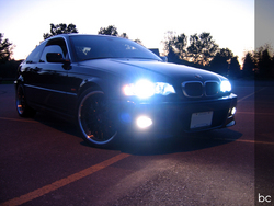 BC_Bimmers 2001 BMW 3 Series