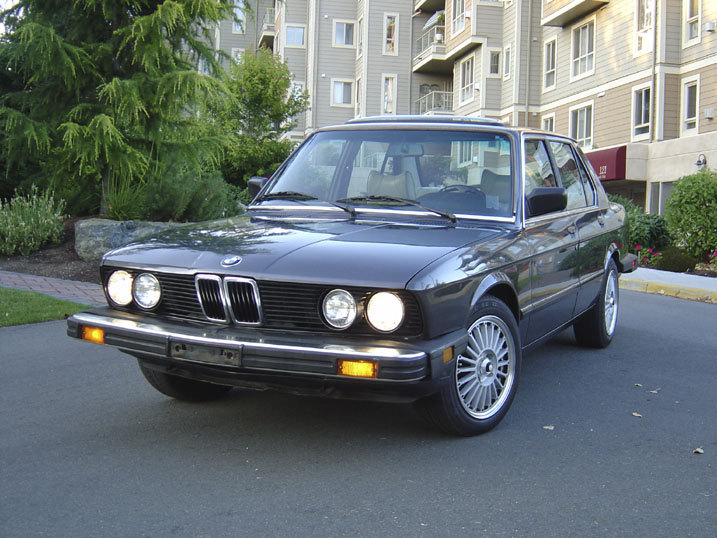 Slaytanic 666 1984 Bmw 5 Series Specs Photos Modification Info At Cardomain