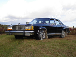 mark_james4LTDs 1986 Ford LTD Crown Victoria