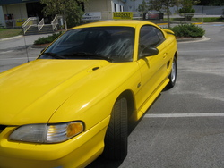 rickhood1989s 1995 Ford Mustang