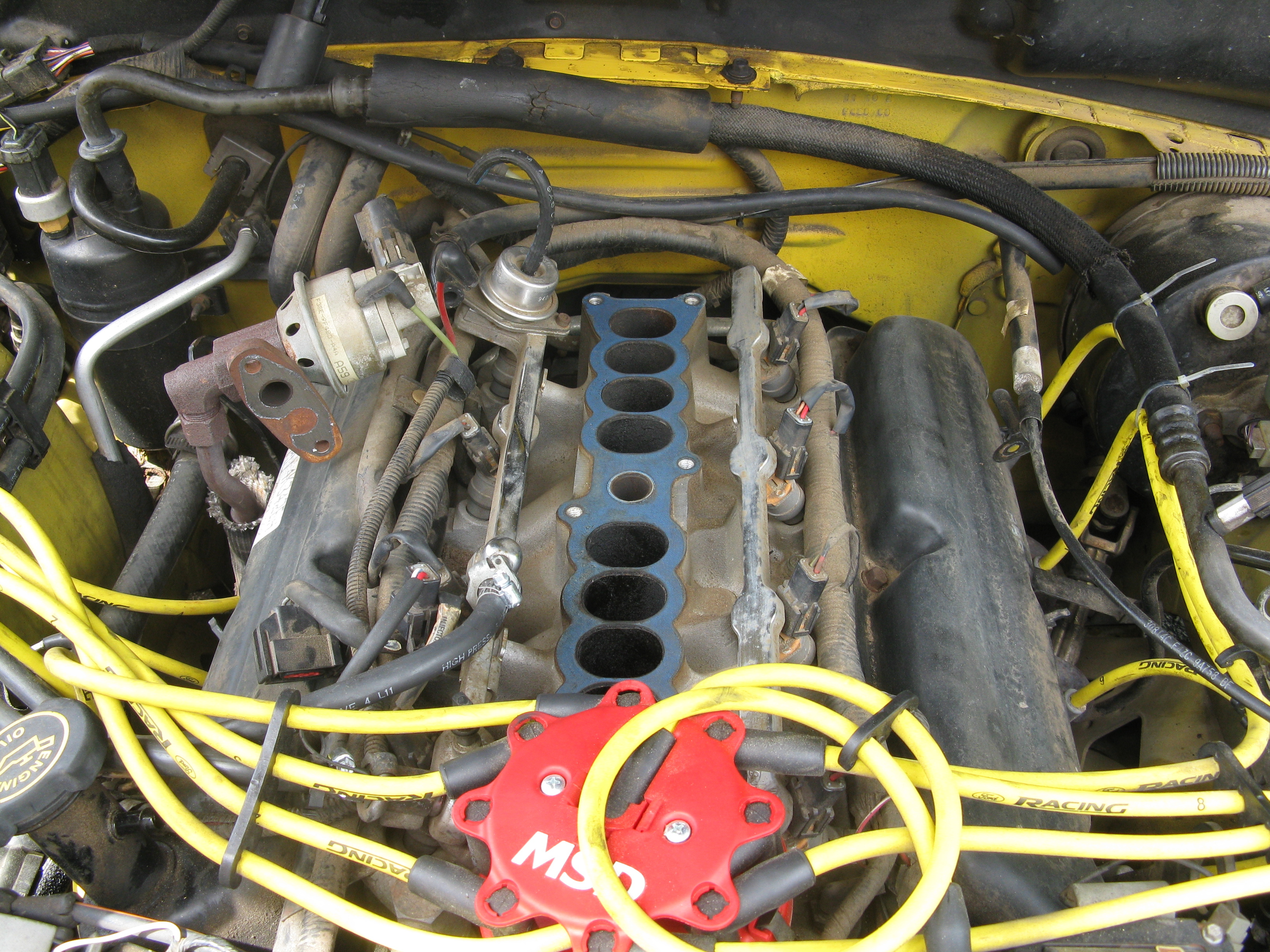 Another rickhood1989 1995 Ford Mustang post... - 12045953