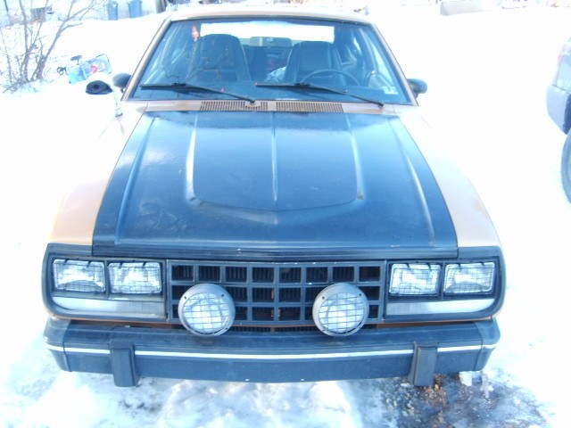Gobbs_stopper 1983 AMC Eagle 12051392
