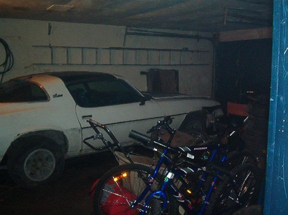 Another 96SS350 1981 Chevrolet Camaro post... - 9459290