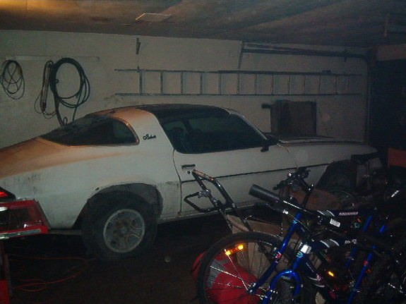 Another 96SS350 1981 Chevrolet Camaro post... - 9459291