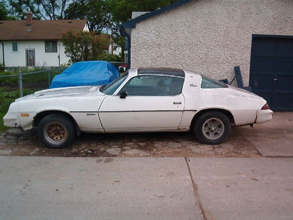 Another 96SS350 1981 Chevrolet Camaro post... - 9459292