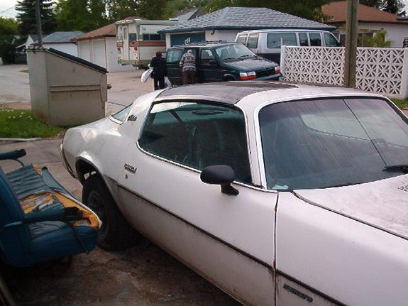 Another 96SS350 1981 Chevrolet Camaro post... - 9459301