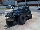 cbunz55s 1994 Jeep Wrangler