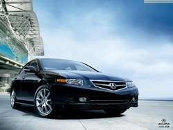 Civilized 2008 Acura TSX