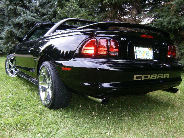 Another Venomous_SVT 1998 Ford Mustang post... - 12091333