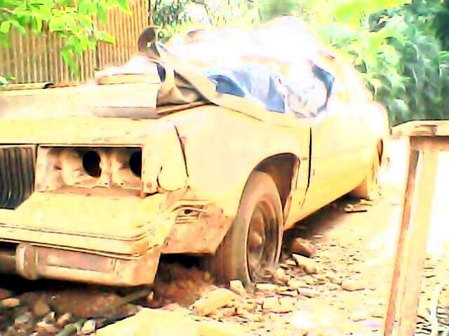 Another blueoyster 1984 Oldsmobile Cutlass post... - 12092856