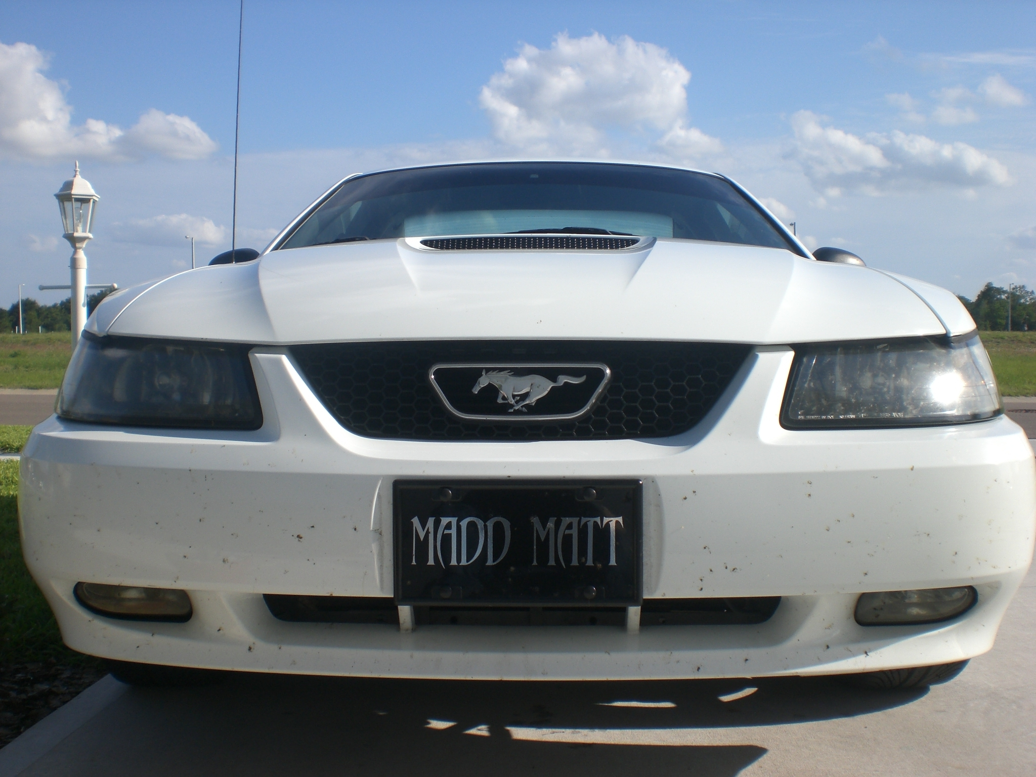 mattsblackmax 39 s 1999 ford mustang in winter haven fl. Black Bedroom Furniture Sets. Home Design Ideas