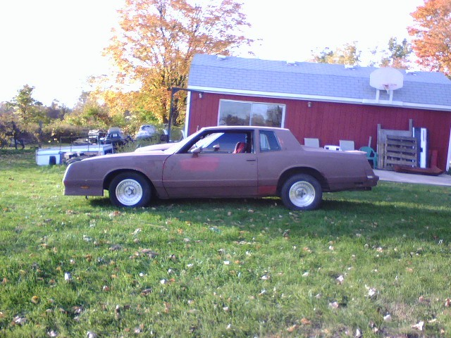 Another Walpy 1981 Chevrolet Monte Carlo post... - 12119812