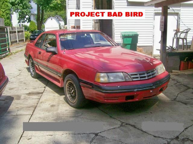 Another GT40Cougar 1988 Ford Thunderbird post... - 12128242