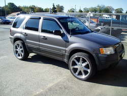 TRSRingo 2003 Ford Escape