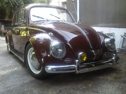 beetle73s 1963 Volkswagen Beetle