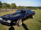 KINGMAN35 1977 Pontiac Trans Am 12537709