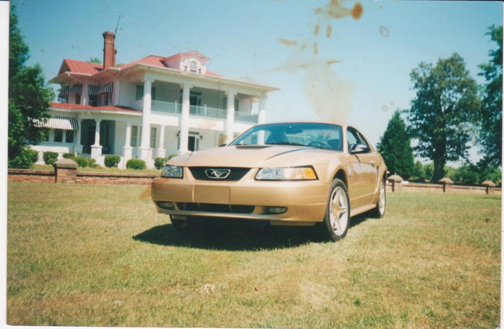 the12fast4u 2000 Ford Mustang 12190028