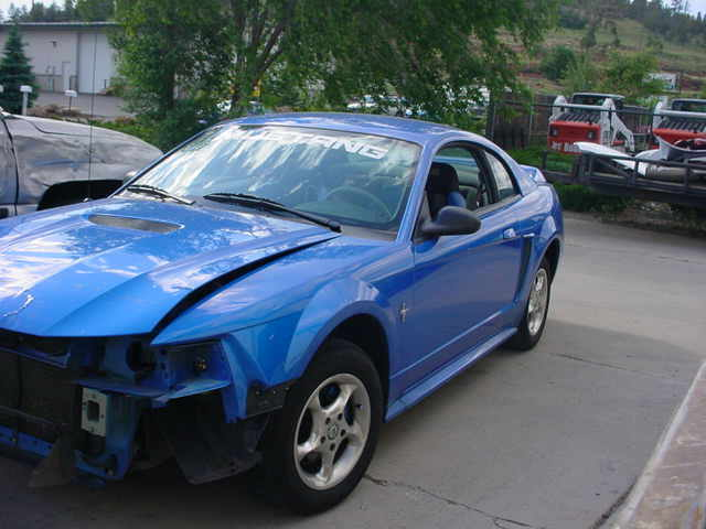 Another flagstang 2000 Ford Mustang post... - 12191130