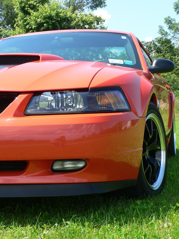 Another yodacode43 2004 Ford Mustang post... - 12204249