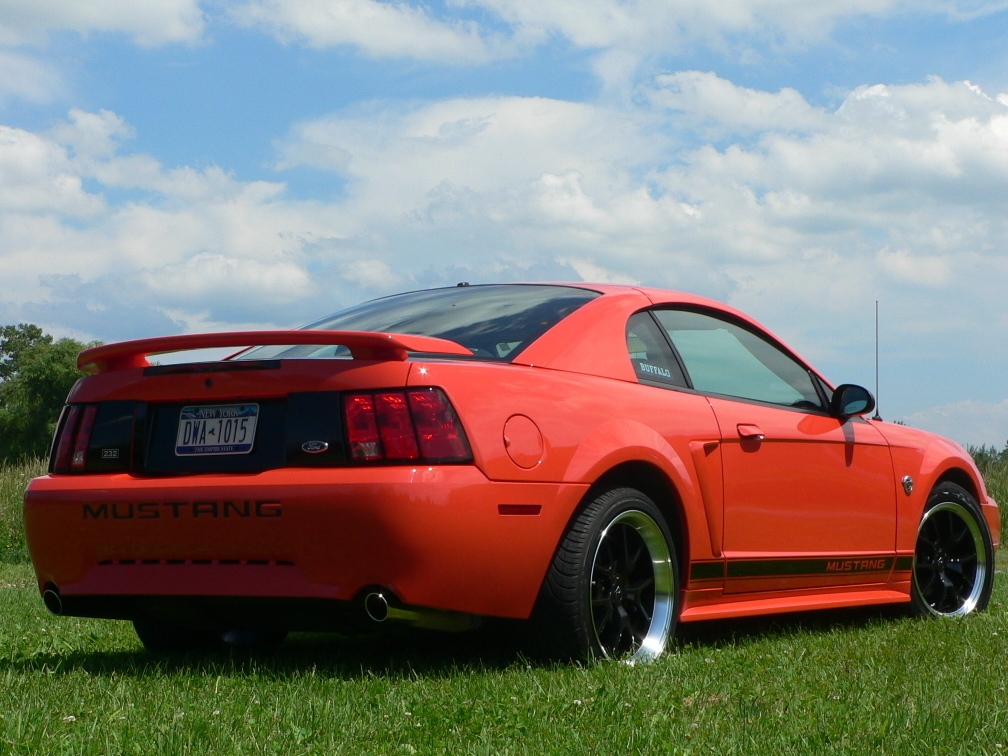Another yodacode43 2004 Ford Mustang post... - 12204250