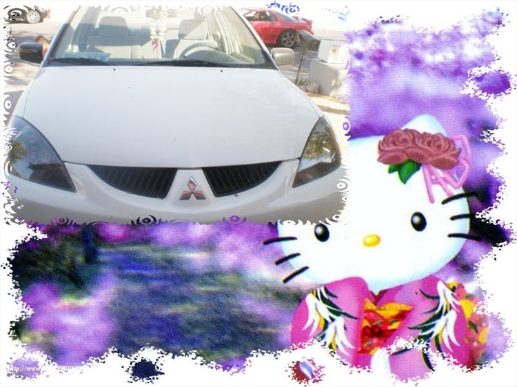 RALLIARTKitty 2005 Mitsubishi Lancer 4568007