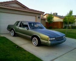 luxurious-dreams 1986 Chevrolet Monte Carlo