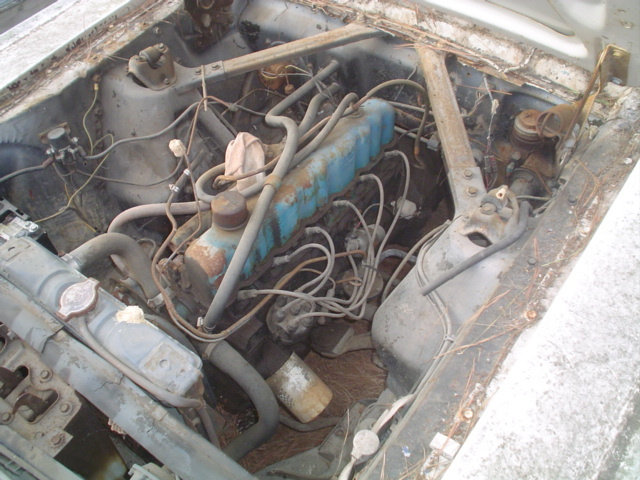 Another hjh1226 1966 Ford Mustang post... - 12234474