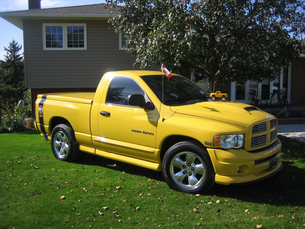 3507rumblebee 2004 dodge ram 1500 regular cab specs photos modification info at cardomain. Black Bedroom Furniture Sets. Home Design Ideas